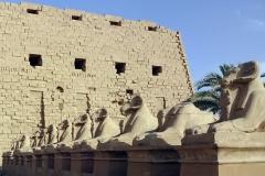 egypt-3344002_960_720
