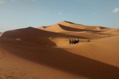 desert-2109357_960_720