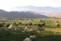morocco-2525290_960_720