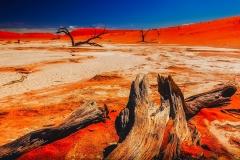 namibia-2209815_960_720