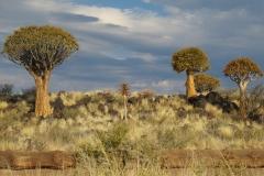 namibia-409372_960_720