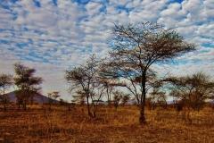 tanzania-300468_960_720